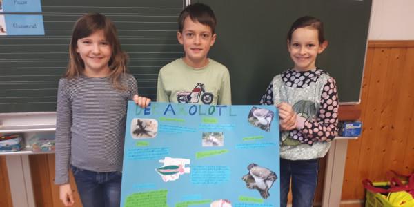 Tierprojekt 3